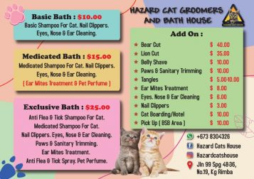 Cat Grooming and Bath