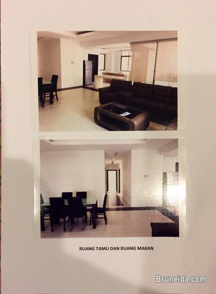 AFR-24 LUXURY APARTMENT FOR RENT