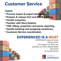 Looking for Customer Service in the Maritime