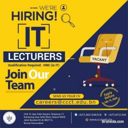 IT Lecturers